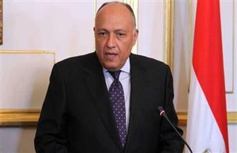 وزير الخارجية ونظيره الأفغاني يبحثان سبل تطوير العلاقات الثنائية