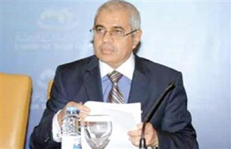 """المستشار أحمد سعيد: مصر سعت  للنهوض بقدرات مجموعة """"المينافاتف"""" لمكافحة غسل الأموال"""