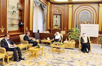 سفير مصر لدى الرياض يلتقي رئيس مجلس الشورى السعودي | صور