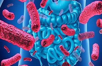 اكتشاف غير متوقع.. بكتيريا الأمعاء تحمي من الإشعاع
