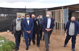 وزير الزراعة: الإعداد لمشروعات زراعية  بالتعاون مع  الإيفاد بنحو 1.300 مليار جنيه بمطروح  صور