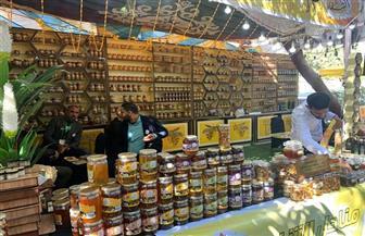 الزراعة: مهرجان العسل المصري يشهد إقبالا جماهيريا | صور