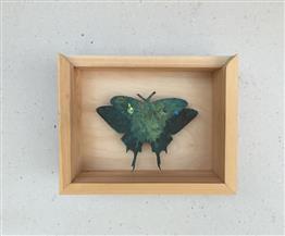التشكيلية رانيا الحكيم تستكشف الطبيعة بـ«ظل الفراشة»| صور