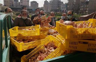 ضبط كمية من الدواجن واللحوم غير صالحة للاستخدام الآدمي بكفر الشيخ