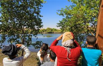بعيدا عن الشاشات.. رحلة لتأمل الطبيعة والبيئة الخلابة في أسوان | صور