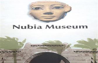 متحف النوبة بأسوان يفتح أبوابه بالمجان للزائرين في الذكرى 23 لافتتاحه | صور