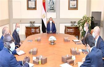 """الرئيس السيسي يستقبل رئيس شركة """"اورانج"""" العالمية للاتصالات"""