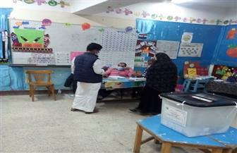 تزايد الإقبال على لجان التصويت مساء اليوم الثاني لانتخابات النواب بمطروح