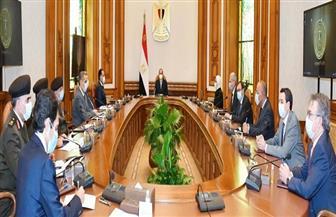 الرئيس السيسي يوجه بالبدء الفوري في إنشاء مراكز تجميع مشتقات البلازما في مصر