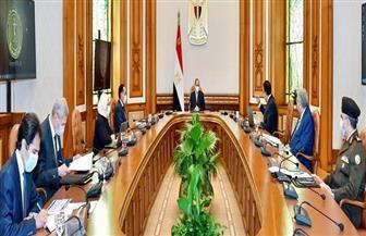 الرئيس السيسي: وباء كورونا لا يزال مستمرا ويجب الالتزام بالإجراءات الاحترازية | فيديو