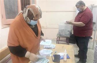 بيان إحصائي.. اللجنة العامة بدائرة أبو المطامير تعلن تقدم «أبو خشيم» و«أبو خطيب»