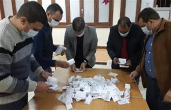 أسماء الفائزين بانتخابات مجلس النواب في المنيا.. بيان إحصائي