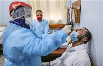 فلسطين: 322 وفاة و7979 حالة إصابة بكورونا في صفوف جالياتنا بالعالم