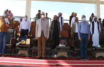 استعدادا للسباقات الدولية.. محافظ جنوب سيناء يشهد سباقا تنسيقيا للهجن بمضمار شرم الشيخ | صور