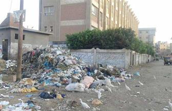 أهالي قرية الماي بالمنوفية يشكون من تلال القمامة.. والوحدة المحلية: الأزمة في السلوكيات | صور