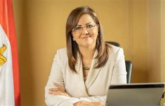 """أرقام مهمة حول الدخل والإنفاق والاستهلاك في مصر.. ننشر كلمة وزيرة التخطيط بمؤتمر""""الإحصاء"""""""