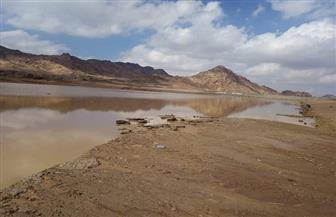 وزير الري يكشف سبب عكارة نهر النيل وتأثيرها على الشرب والزراعة | صور