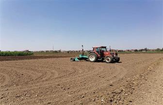 بحوث الصحراء بمطروح: زراعة 4 آلاف فدان شعير بعد توزيع التقاوى مجانا على المزارعين