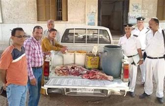 ضبط 200 كيلو جرام لحوم وأسماك مملحة فاسدة في حملة بمدينة طهطا | صور