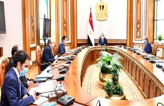 الرئيس السيسي يوجه بالتوسع في المشروعات الزراعية بالوادي الجديد وما يتصل بها من صناعات