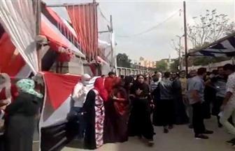 استمرار توافد المواطنين على اللجان الانتخابية في حلوان والمعصرة | فيديو