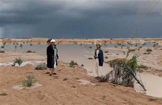 أمطار رعدية تضرب مدن مطروح.. وأجهزة المحافظة تزيل آثارها   فيديو