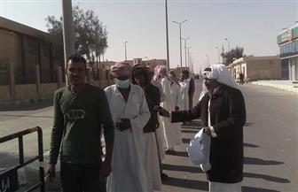 إقبال متوسط بلجان مدينة نخل في شمال سيناء | صور