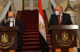 شكري: مصر تربطها علاقات استراتيجية مع الولايات المتحدة منذ 4 عقود