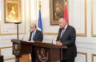 شكري: لا يوجد حجز تعسفي بمصر.. ولدينا سلطة قضائية مشهود لها بالنزاهة