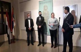 سفير مصر في بلجراد يفتتح سلسلة أيام الثقافة المصرية |صور