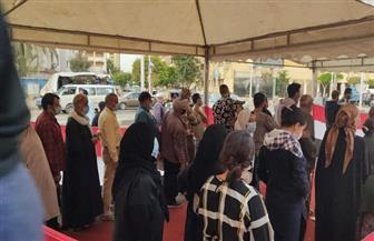 استمرار توافد المواطنين للمشاركة في الانتخابات البرلمانية بالأميرية| صور