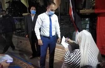 رئيس لجنة انتخابية بالمنوفية يساعد مسنة للإدلاء بصوتها  صور وفيديو