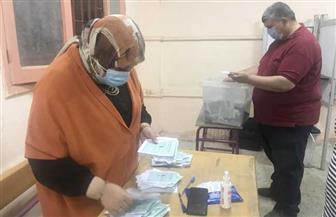 بدء فرز الأصوات في انتخابات النواب بالدقهلية بحضور ممثلي المرشحين  صور وفيديو