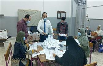 بيانات إحصائية.. أشمون الأعلى تصويتا بـ 69407 أصوات في انتخابات النواب بالمنوفية