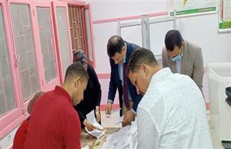 بيان إحصائي عن الدائرة الأولى بمدينة طابا في جنوب سيناء