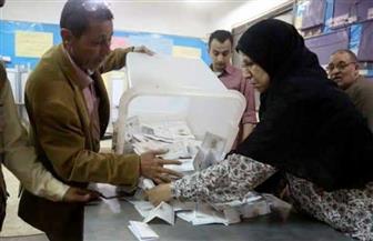 """بيان إحصائي.. يكشف أعداد المصوتين في الدائرتين الثانية والثالثة بانتخابات """"النواب"""" في الإسماعيلية"""