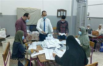 """اللجنة العامة بدائرة الباجور: حصول """"البرعي"""" على 16 ألف صوت و""""الصعيدي"""" 10888 و""""أبو فرح"""" 10383"""