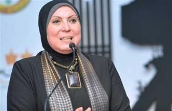 وزيرة الصناعة  تدعو لعقد فعاليات اللجنة التجارية المشتركة مع الإمارات