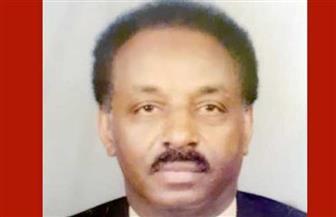 رئيس حزب التحالف الوطني السوداني والقيادي بقوى التغيير لـ«الأهرام»: تقديم البشير وقادة نظامه للعدالة مطلب شعبي