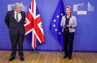 السمك والفاكهة على مائدة عشاء رئيس وزراء بريطانيا ورئيسة المفوضية الأوروبية