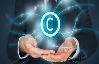 حملات لمكافحة جرائم التعدي على حقوق الملكية الفكرية