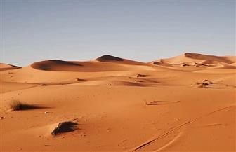 ممثل البوليساريو: الاعتراف الأمريكي بسيادة المغرب على الصحراء الغربية غريب لكن ليس مفاجئا