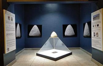 متحف الأقصر يقيم معرضا مؤقتا لإحدى القطع الأثرية   صور