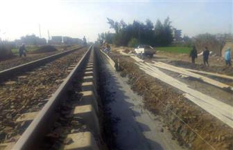 محافظة الدقهلية: بدء العمل بمحطة قطار العصافرة بمركز المطرية | صور
