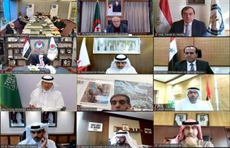 """مصر تشارك في اجتماع وزراء منظمة الدول العربية المصدرة للبترول """"أوابك"""""""