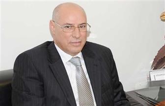 أبرز ملاحظات بعثة الجامعة العربية بشأن الجولة الثانية للانتخابات البرلمانية