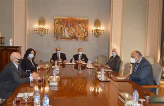 وزير الخارجية يستقبل أعضاء المجلس المصري للشئون الخارجية