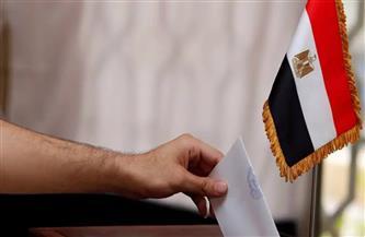 """بالأسماء.. 7 فائزين في إعادة انتخابات """"النواب"""" بالقاهرة"""