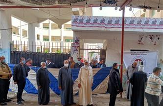 تعرف على أسماء 10 فائزين في إعادة انتخابات النواب بكفر الشيخ