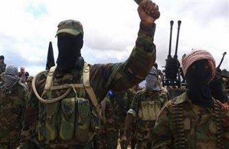 بوكو حرام تعلن مسئوليتها عن هجوم دام في النيجر